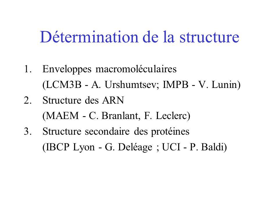 Détermination de la structure 1.Enveloppes macromoléculaires (LCM3B - A. Urshumtsev; IMPB - V. Lunin) 2.Structure des ARN (MAEM - C. Branlant, F. Lecl