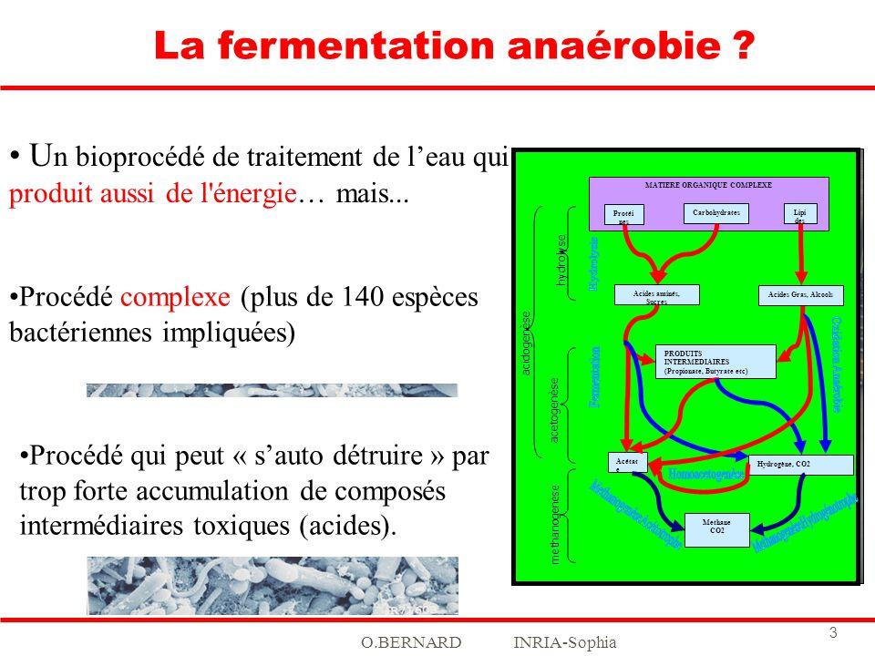 O.BERNARD INRIA-Sophia 3 U n bioprocédé de traitement de leau qui produit aussi de l'énergie… mais... La fermentation anaérobie ? MATIERE ORGANIQUE CO