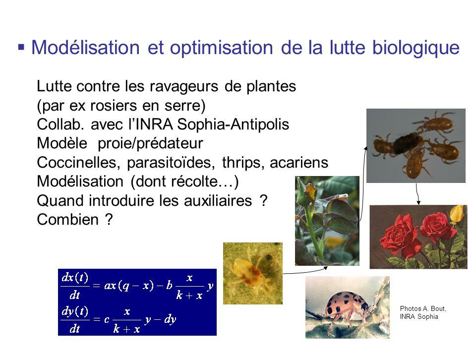 Lutte contre les ravageurs de plantes (par ex rosiers en serre) Collab.