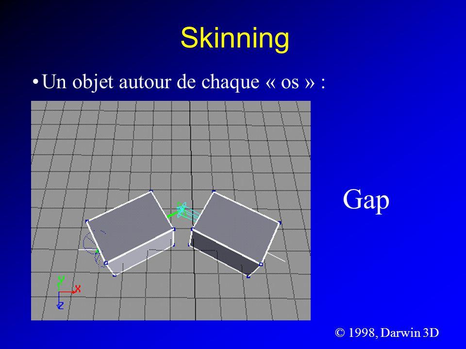 Un objet autour de chaque « os » : © 1998, Darwin 3D Gap