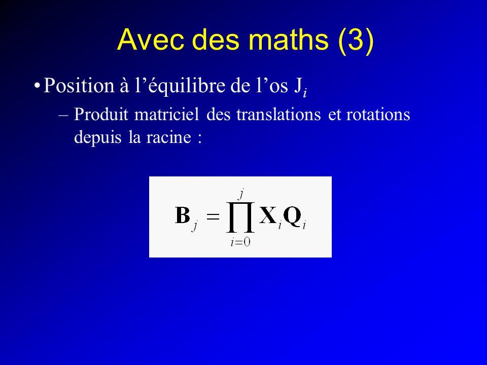 Avec des maths (3) Position à léquilibre de los J i –Produit matriciel des translations et rotations depuis la racine :