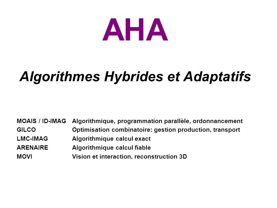 AHA Algorithmes Hybrides et Adaptatifs MOAIS / ID-IMAG Algorithmique, programmation parallèle, ordonnancement GILCOOptimisation combinatoire: gestion