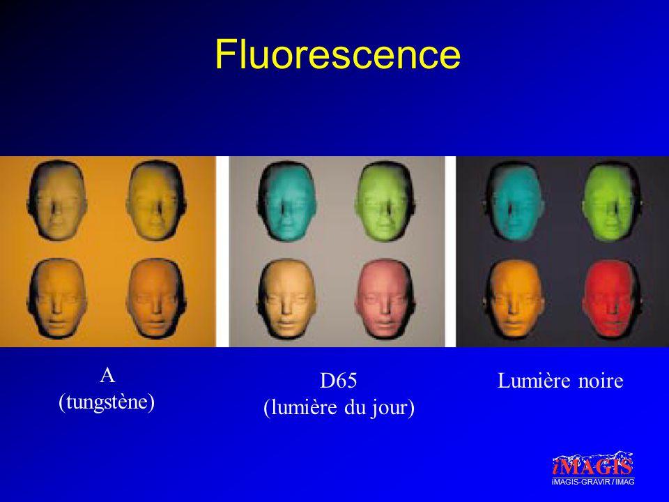 iMAGIS-GRAVIR / IMAG Fluorescence A (tungstène) D65 (lumière du jour) Lumière noire