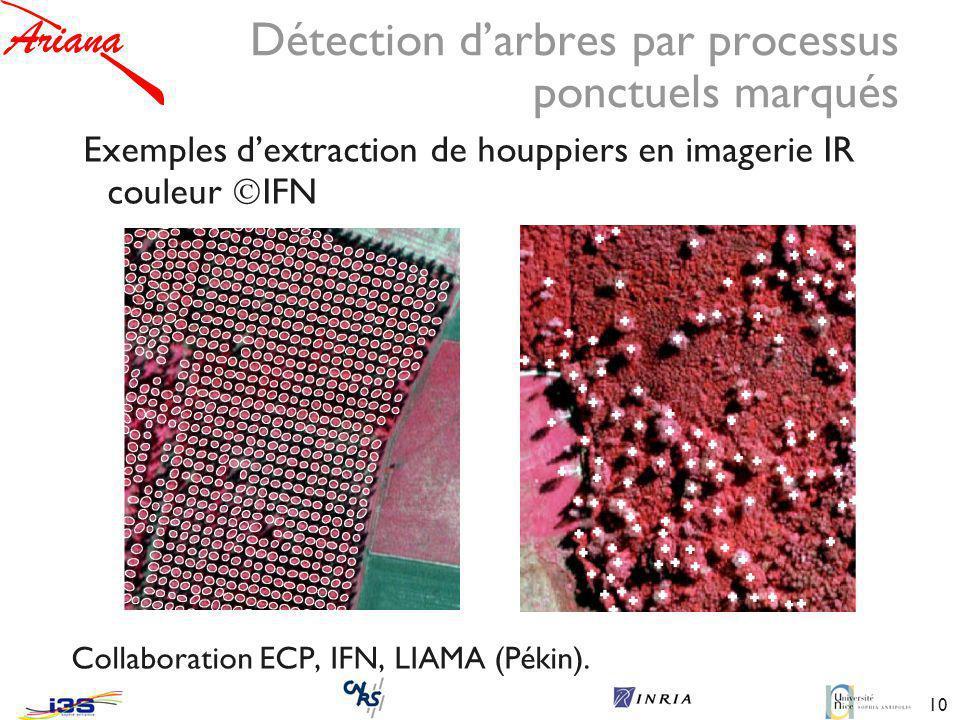 10 Détection darbres par processus ponctuels marqués Exemples dextraction de houppiers en imagerie IR couleur IFN Collaboration ECP, IFN, LIAMA (Pékin).