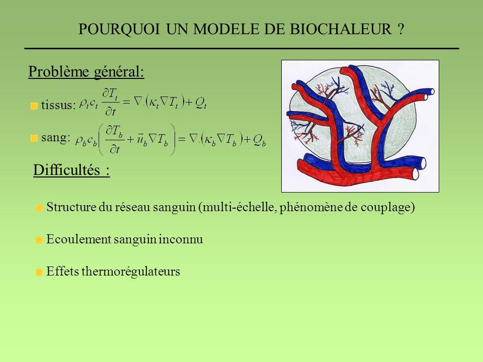POURQUOI UN MODELE DE BIOCHALEUR ? Problème général: tissus: sang: Difficultés : Structure du réseau sanguin (multi-échelle, phénomène de couplage) Ec
