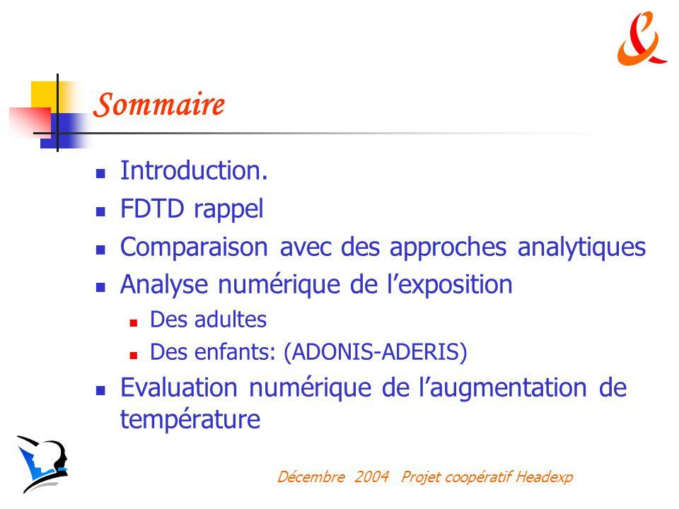 Décembre 2004 Projet coopératif Headexp Sommaire Introduction.