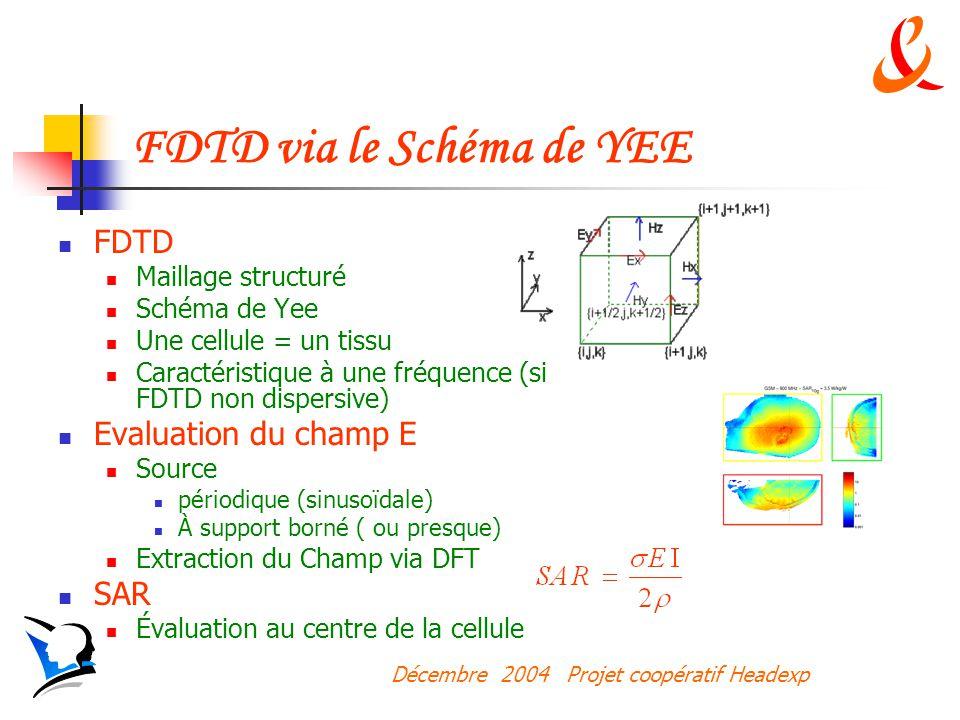 Décembre 2004 Projet coopératif Headexp FDTD via le Schéma de YEE FDTD Maillage structuré Schéma de Yee Une cellule = un tissu Caractéristique à une fréquence (si FDTD non dispersive) Evaluation du champ E Source périodique (sinusoïdale) À support borné ( ou presque) Extraction du Champ via DFT SAR Évaluation au centre de la cellule