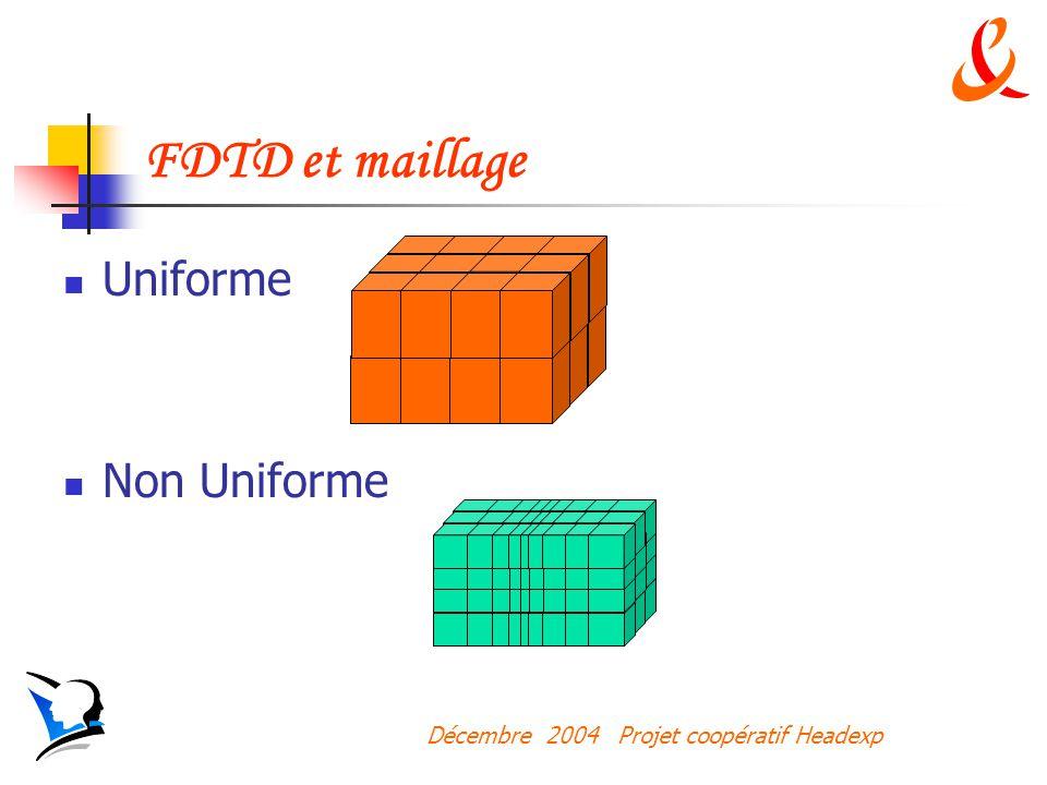 Décembre 2004 Projet coopératif Headexp FDTD et maillage Uniforme Non Uniforme