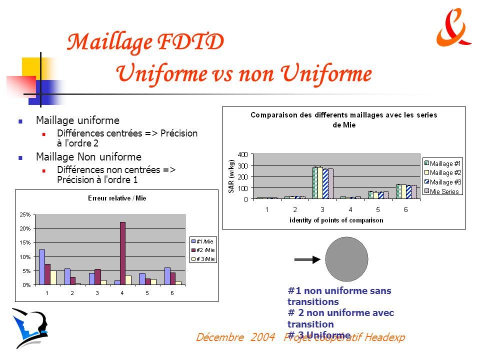 Décembre 2004 Projet coopératif Headexp Maillage FDTD Uniforme vs non Uniforme Maillage uniforme Différences centrées => Précision à l ordre 2 Maillage Non uniforme Différences non centrées => Précision à l ordre 1 #1 non uniforme sans transitions # 2 non uniforme avec transition # 3 Uniforme