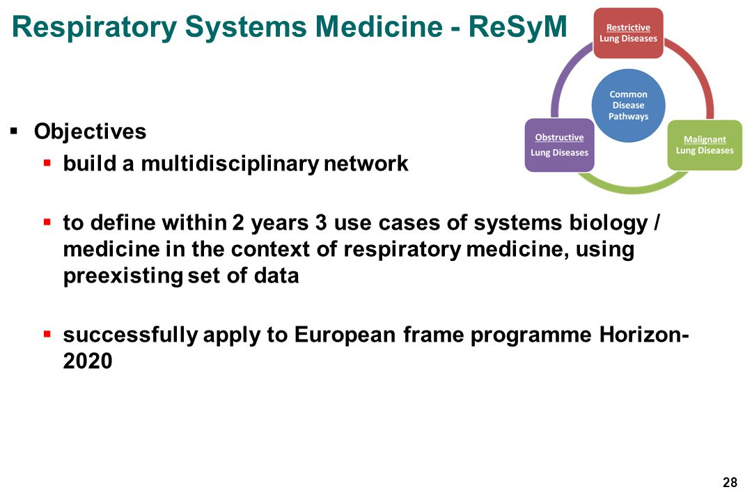 Respiratory Systems Medicine - ReSyM Objectives build a multidisciplinary network to define within 2 years 3 use cases of systems biology / medicine in the context of respiratory medicine, using preexisting set of data successfully apply to European frame programme Horizon- 2020 28