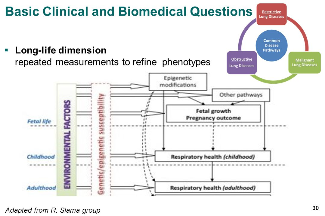 Long-life dimension repeated measurements to refine phenotypes Adapted from R.
