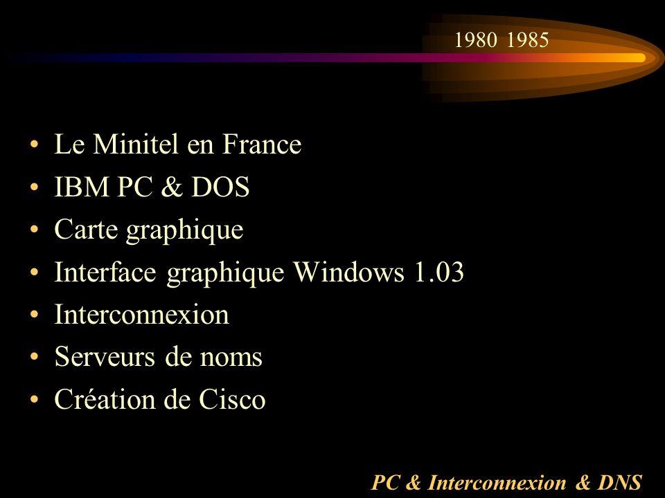 PC & Interconnexion & DNS Le Minitel en France IBM PC & DOS Carte graphique Interface graphique Windows 1.03 Interconnexion Serveurs de noms Création