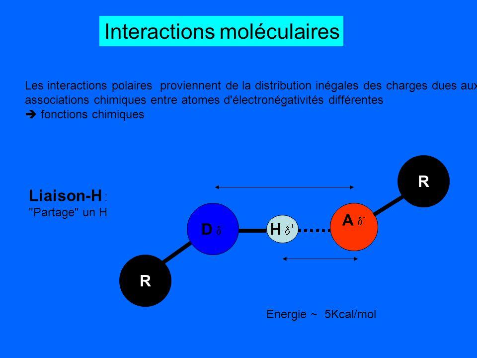 Interactions moléculaires Les interactions polaires proviennent de la distribution inégales des charges dues aux associations chimiques entre atomes d