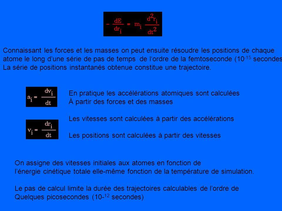 On assigne des vitesses initiales aux atomes en fonction de lénergie cinétique totale elle-même fonction de la température de simulation. Le pas de ca