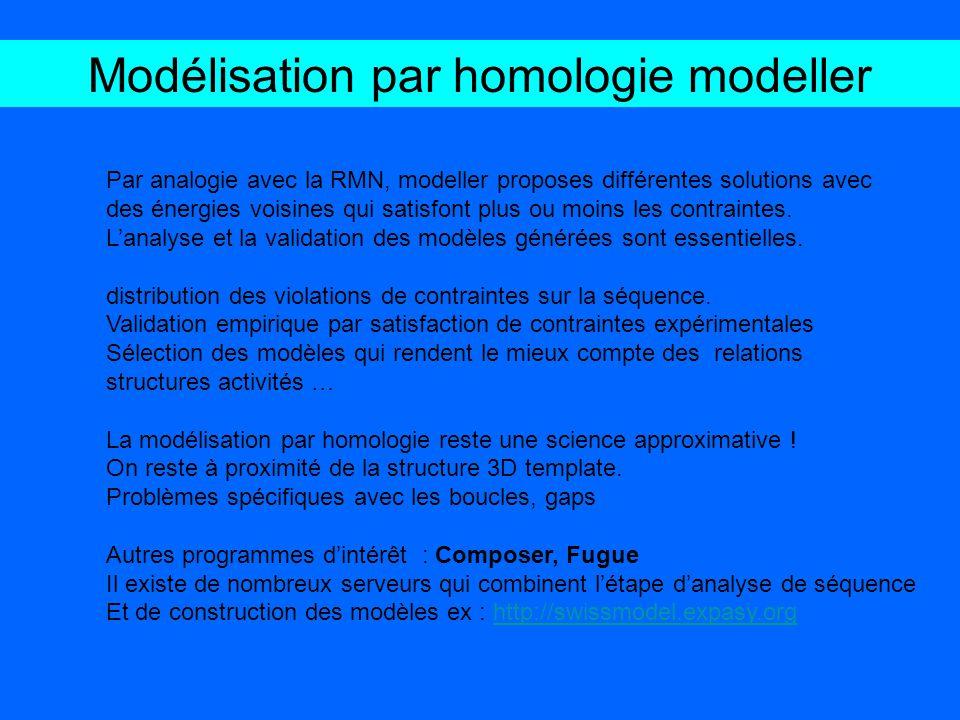 Par analogie avec la RMN, modeller proposes différentes solutions avec des énergies voisines qui satisfont plus ou moins les contraintes. Lanalyse et