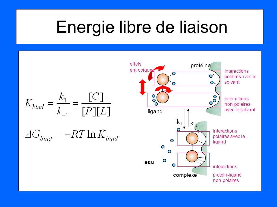 Energie libre de liaison ligand protéine complexe eau Interactions polaires avec le solvant Interactions non-polaires avec le solvant Interactions pol