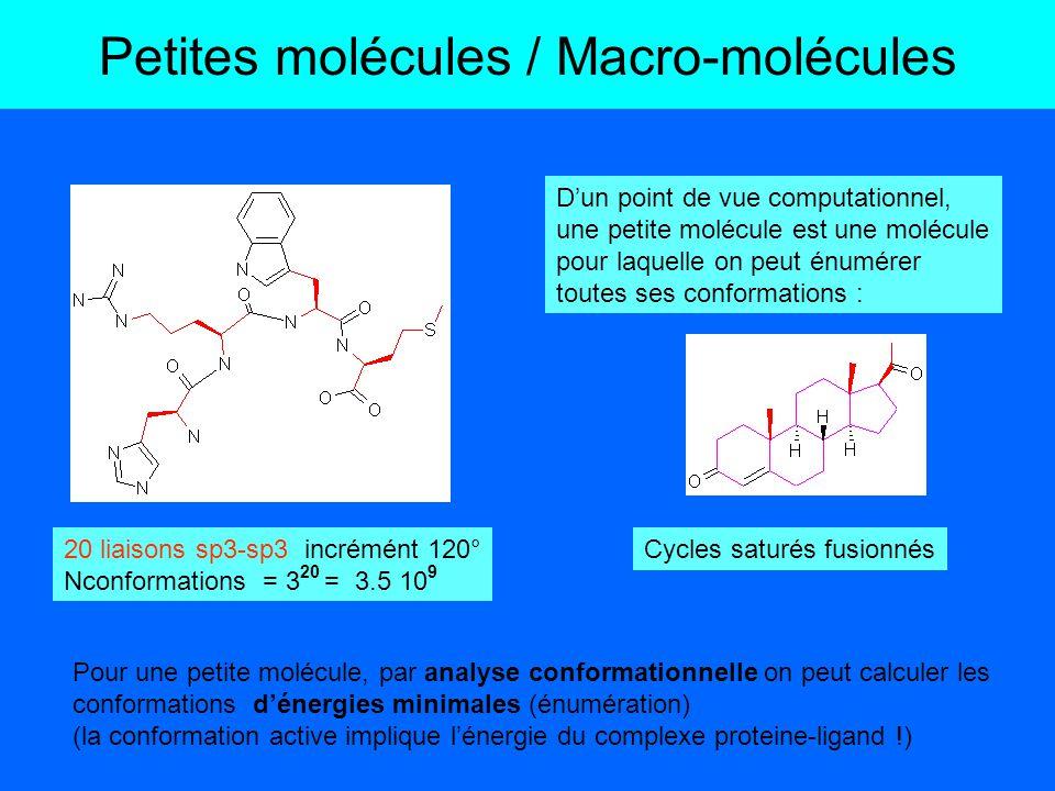 Petites molécules / Macro-molécules Les différentes conformations des macromolécules protéiques ne peuvent être recherchées exhaustivement.