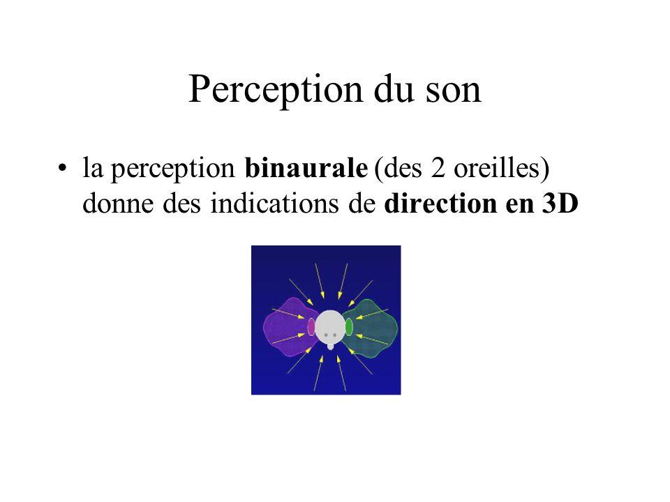 Perception du son la perception binaurale (des 2 oreilles) donne des indications de direction en 3D