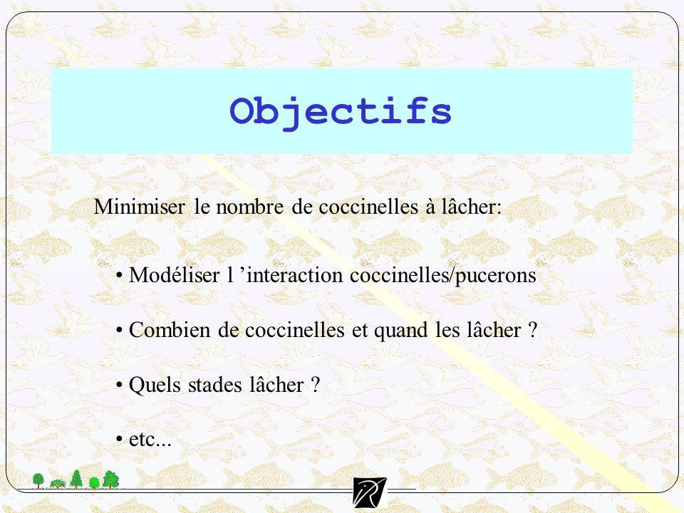 Objectifs Modéliser l interaction coccinelles/pucerons Combien de coccinelles et quand les lâcher ? Quels stades lâcher ? etc... Minimiser le nombre d