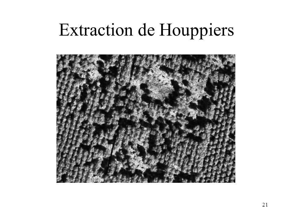 21 Extraction de Houppiers