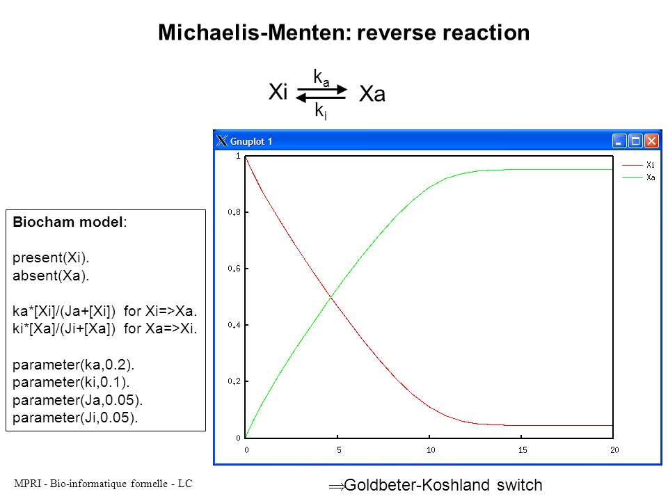 MPRI - Bio-informatique formelle - LC Xi Xa kaka Michaelis-Menten: reverse reaction Biocham model: present(Xi).