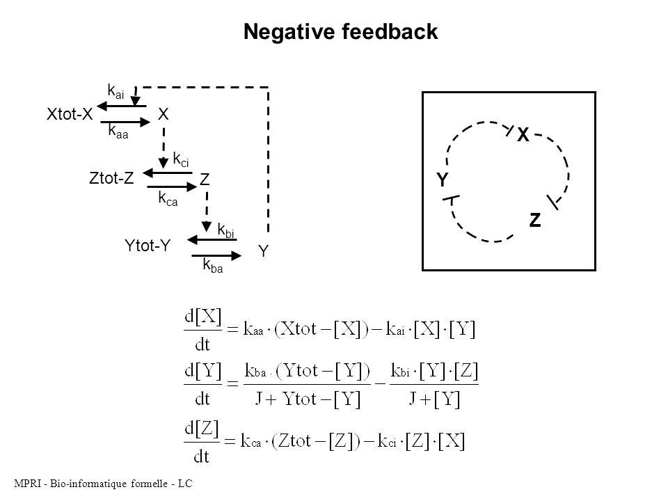 MPRI - Bio-informatique formelle - LC Y X Z Ytot-Y Y k ci k ca Xtot-XX k ai k aa Ztot-Z Z k ba k bi Negative feedback