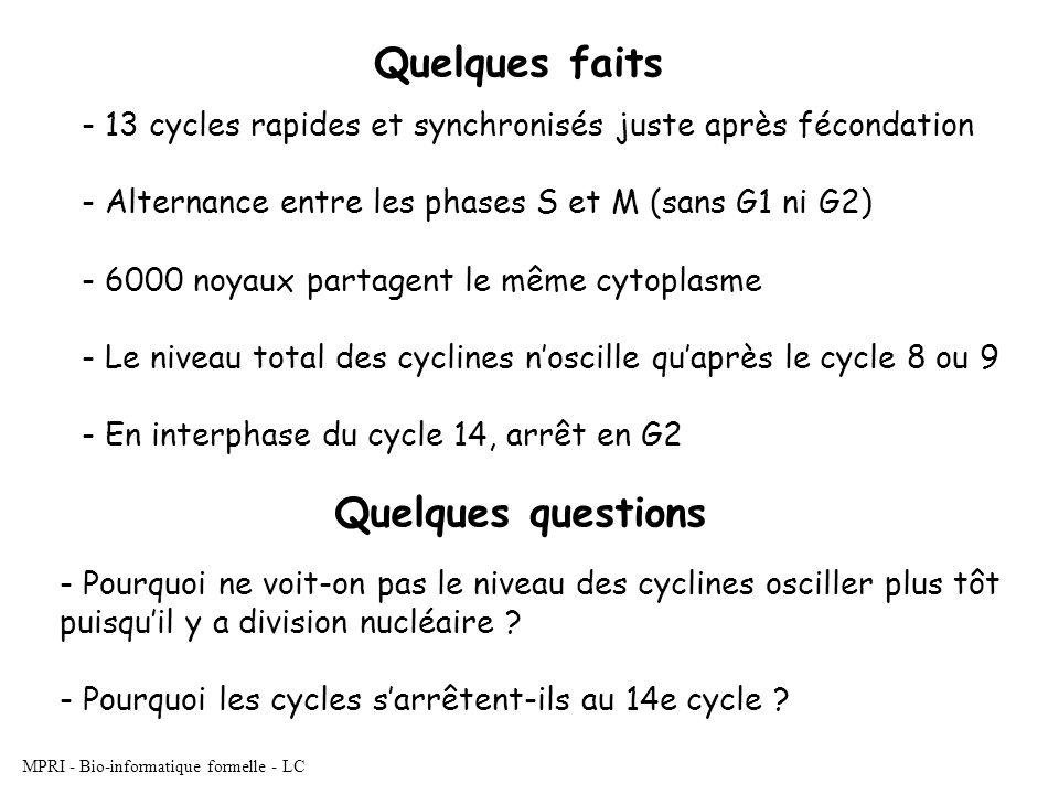 MPRI - Bio-informatique formelle - LC Quelques faits - 13 cycles rapides et synchronisés juste après fécondation - Alternance entre les phases S et M (sans G1 ni G2) - 6000 noyaux partagent le même cytoplasme - Le niveau total des cyclines noscille quaprès le cycle 8 ou 9 - En interphase du cycle 14, arrêt en G2 Quelques questions - Pourquoi ne voit-on pas le niveau des cyclines osciller plus tôt puisquil y a division nucléaire .