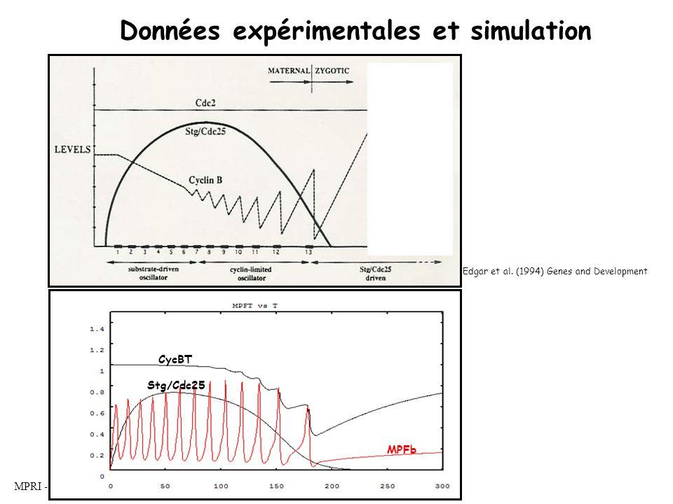 MPRI - Bio-informatique formelle - LC Données expérimentales et simulation CycBT Stg/Cdc25 MPFb Edgar et al.