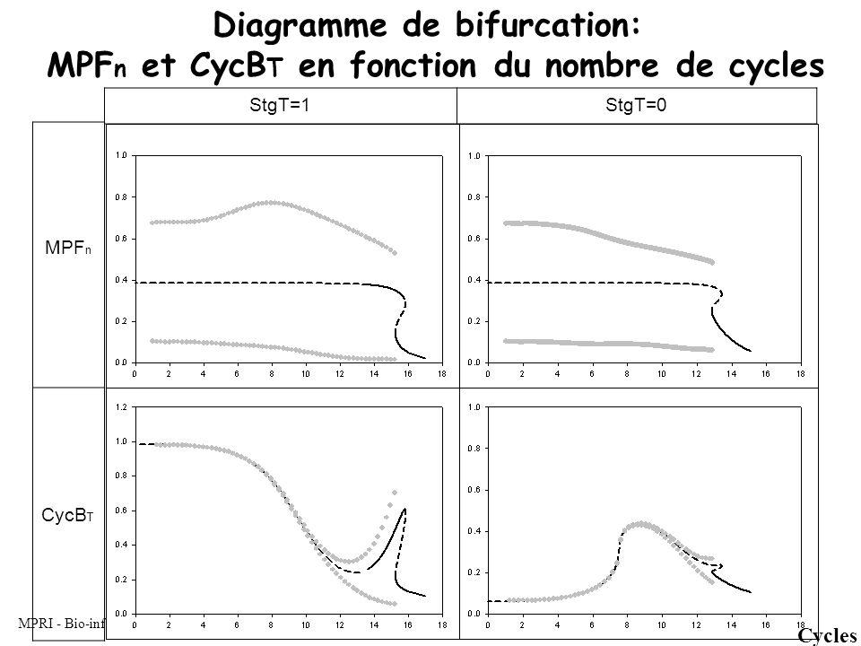 MPRI - Bio-informatique formelle - LC Diagramme de bifurcation: MPF n et CycB T en fonction du nombre de cycles StgT=1StgT=0 Cycles MPF n CycB T