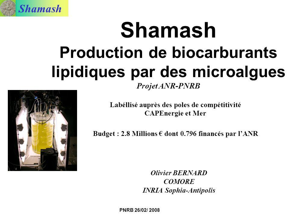Shamash PNRB 26/02/ 2008 Shamash Production de biocarburants lipidiques par des microalgues Projet ANR-PNRB Labéllisé auprès des poles de compétitivit