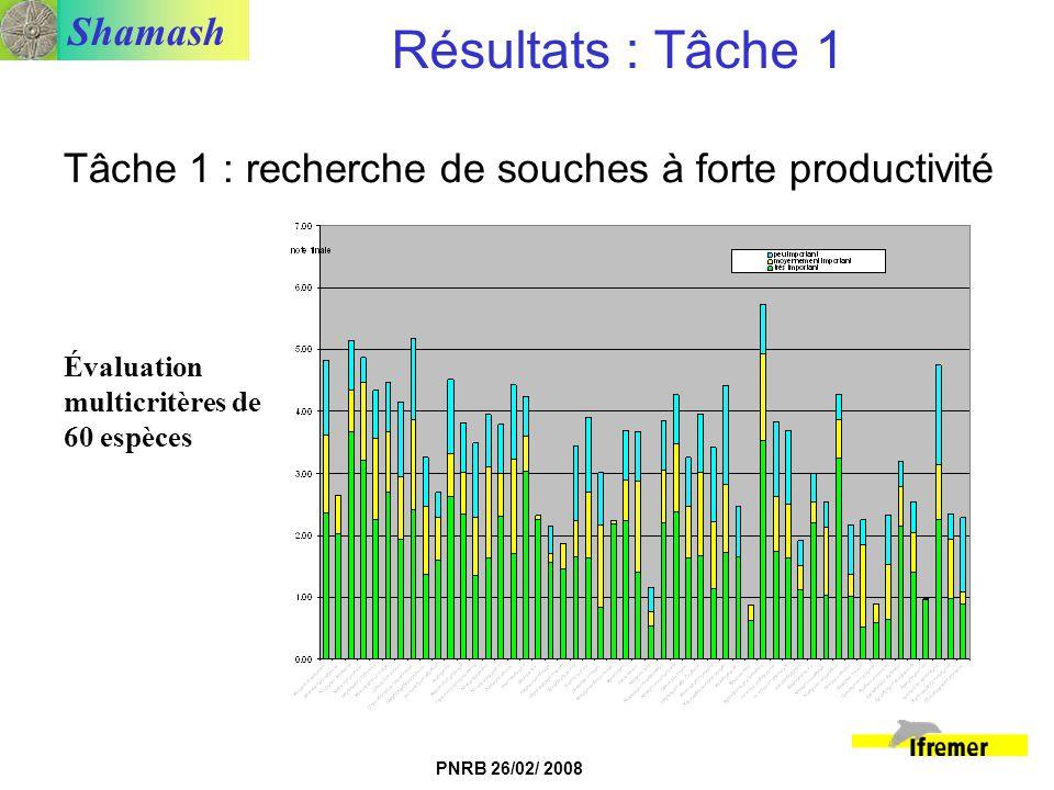 Shamash PNRB 26/02/ 2008 Tâche 1 : recherche de souches à forte productivité Résultats : Tâche 1 Évaluation multicritères de 60 espèces