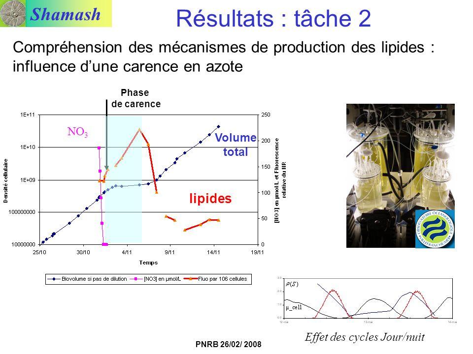 Shamash PNRB 26/02/ 2008 Compréhension des mécanismes de production des lipides : influence dune carence en azote NO 3 lipides Phase de carence Effet
