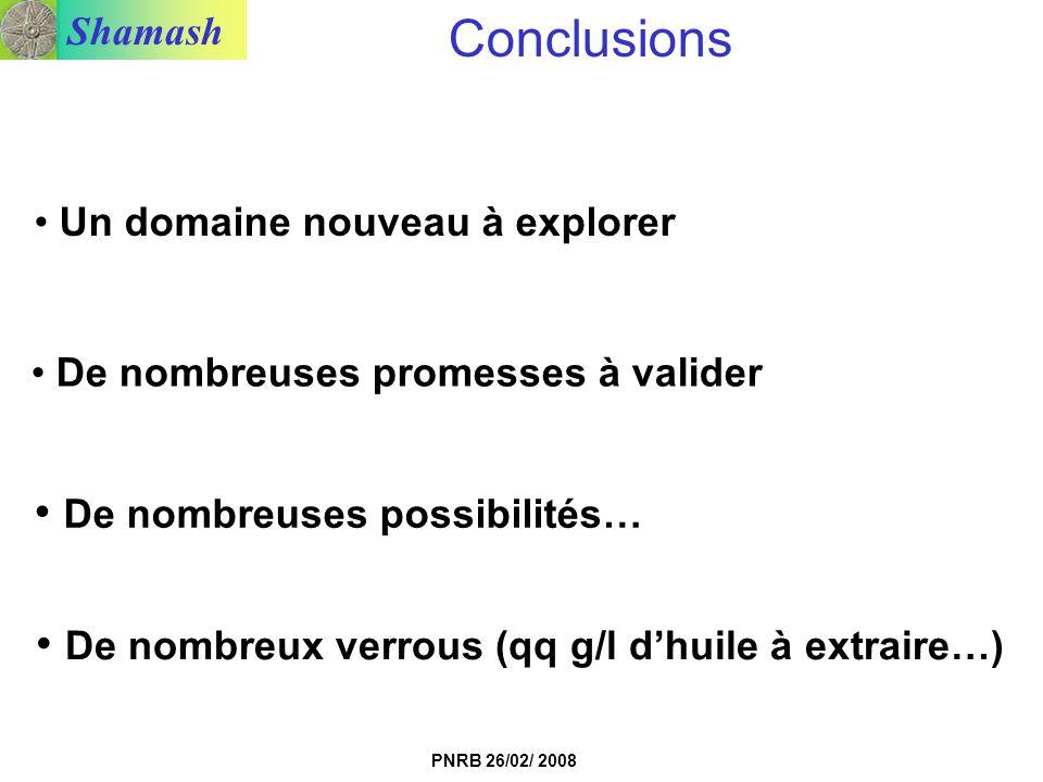 Shamash PNRB 26/02/ 2008 Un domaine nouveau à explorer Conclusions De nombreuses promesses à valider De nombreuses possibilités… De nombreux verrous (