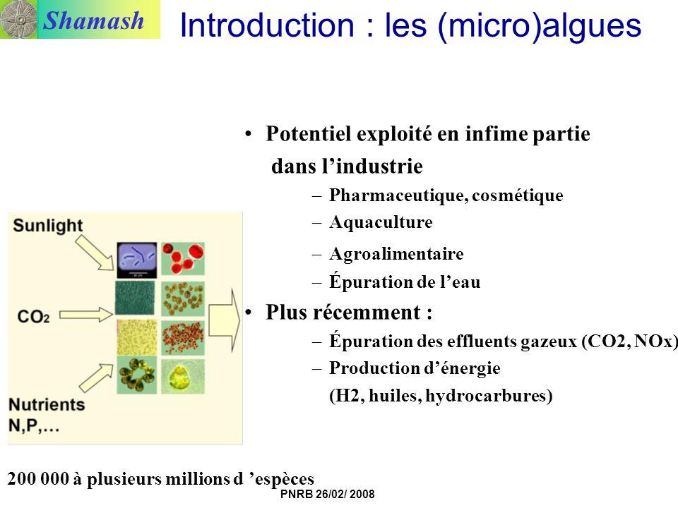 Shamash PNRB 26/02/ 2008 Introduction : les (micro)algues Potentiel exploité en infime partie dans lindustrie –Pharmaceutique, cosmétique –Aquaculture