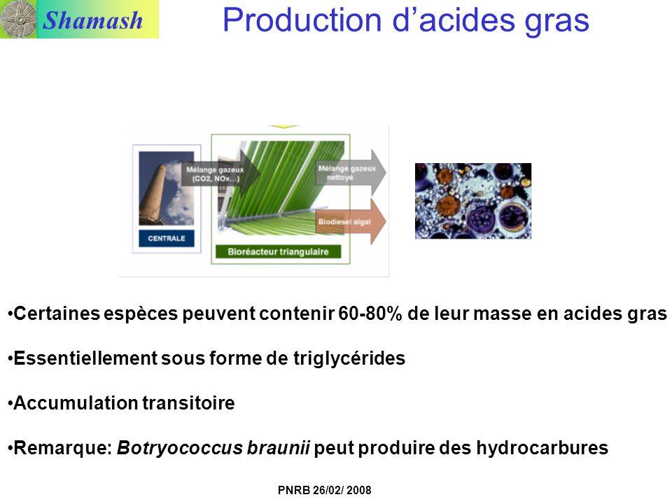 Shamash PNRB 26/02/ 2008 Production dacides gras Certaines espèces peuvent contenir 60-80% de leur masse en acides gras Essentiellement sous forme de