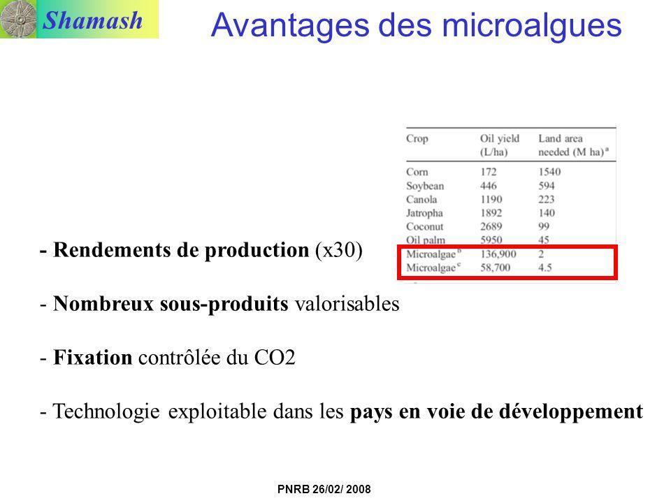 Shamash PNRB 26/02/ 2008 Avantages des microalgues - Rendements de production (x30) - Nombreux sous-produits valorisables - Fixation contrôlée du CO2