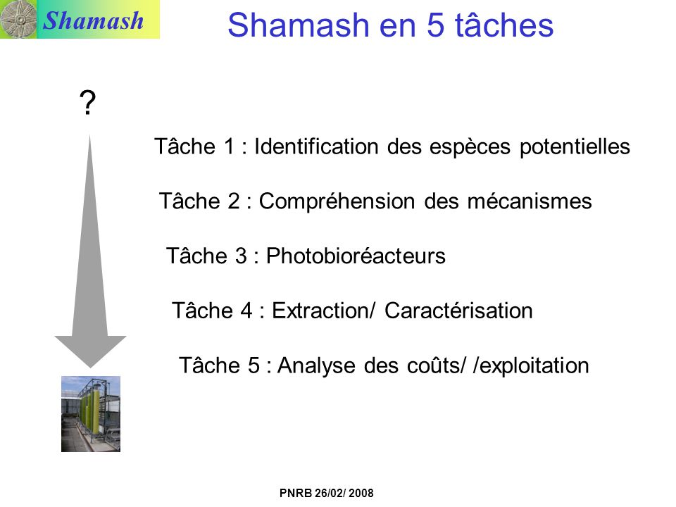 Shamash PNRB 26/02/ 2008 Tâche 1 : Identification des espèces potentielles Tâche 2 : Compréhension des mécanismes Tâche 3 : Photobioréacteurs Tâche 4