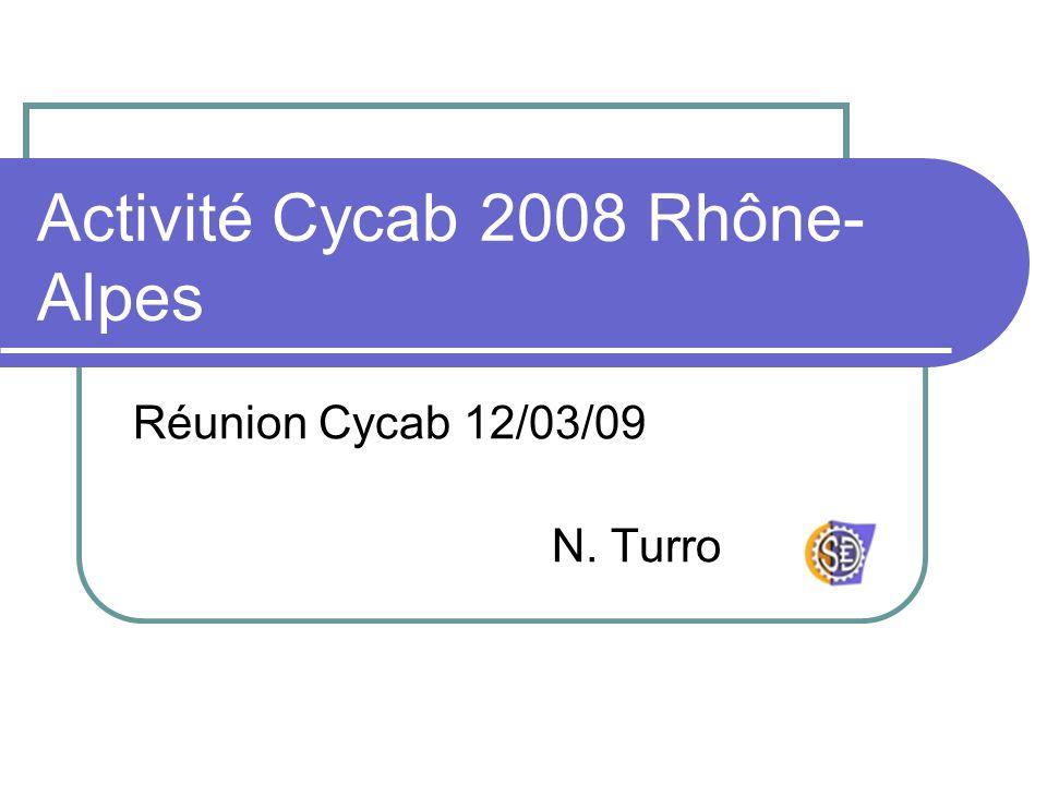 Activité Cycab 2008 Rhône- Alpes Réunion Cycab 12/03/09 N. Turro