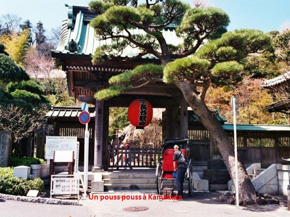 Temple abritant un boudha, à Nara
