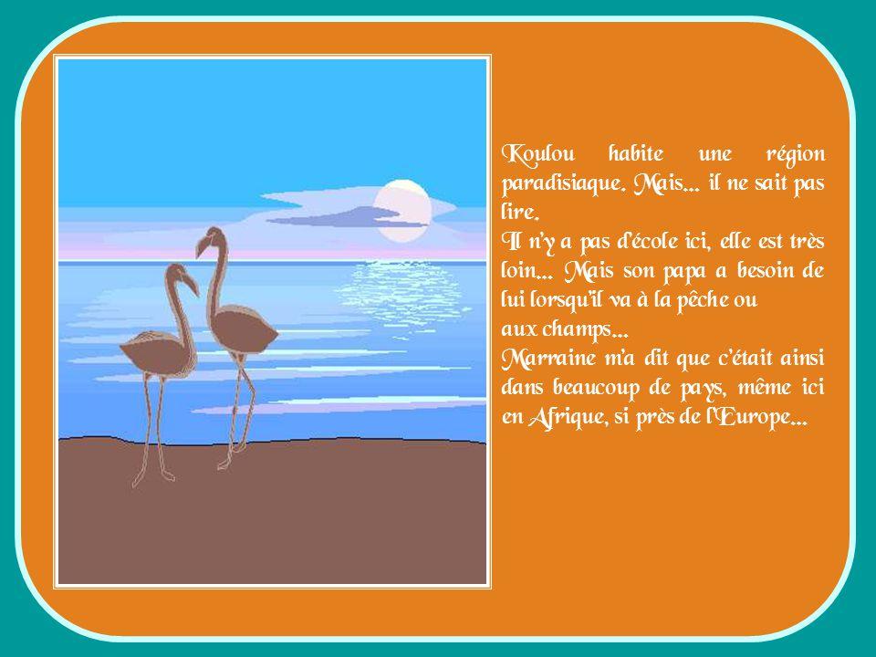Koulou habite une région paradisiaque.Mais… il ne sait pas lire.
