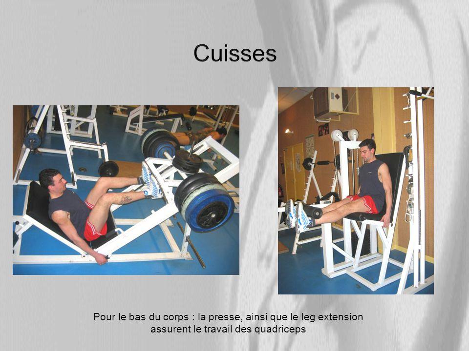 Pour le bas du corps : la presse, ainsi que le leg extension assurent le travail des quadriceps