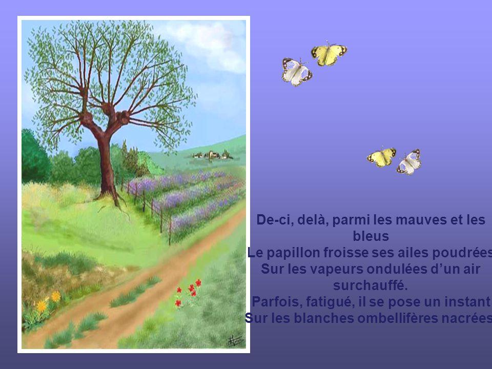 De-ci, delà, parmi les mauves et les bleus Le papillon froisse ses ailes poudrées Sur les vapeurs ondulées dun air surchauffé.