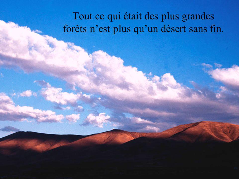 La simple image dune fleur est un lointain souvenir trop beau pour nous.