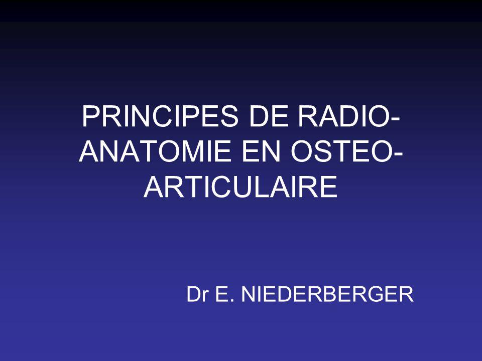PRINCIPES DE RADIO- ANATOMIE EN OSTEO- ARTICULAIRE Dr E. NIEDERBERGER