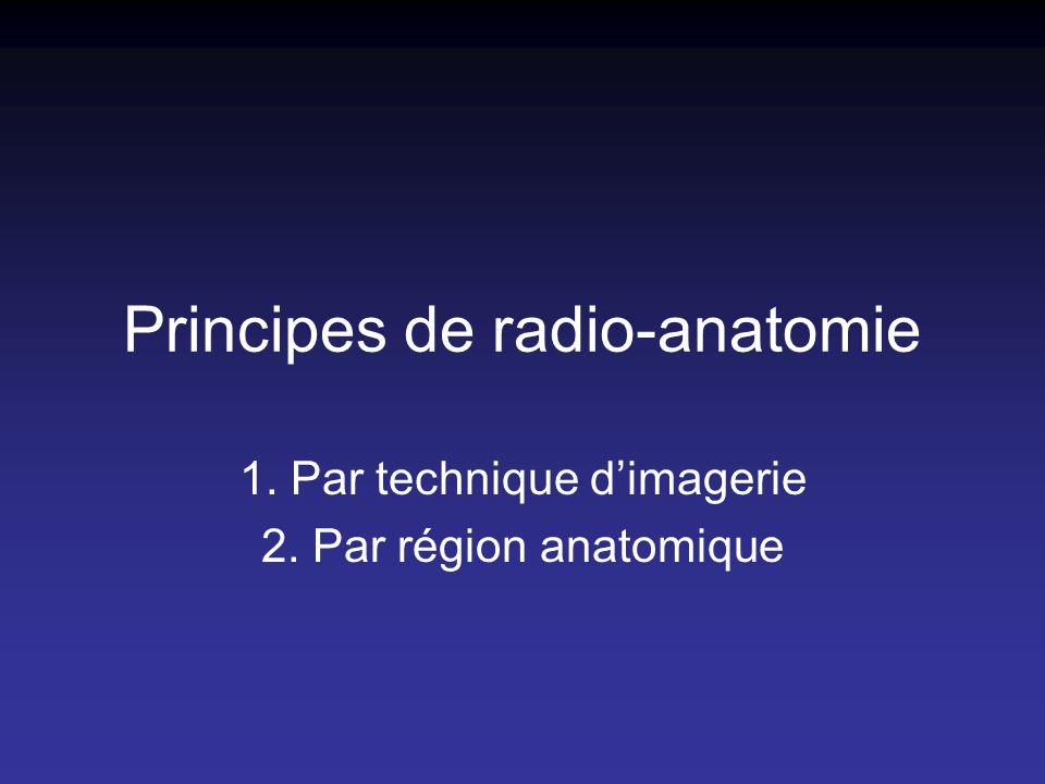Principes de radio-anatomie 1. Par technique dimagerie 2. Par région anatomique