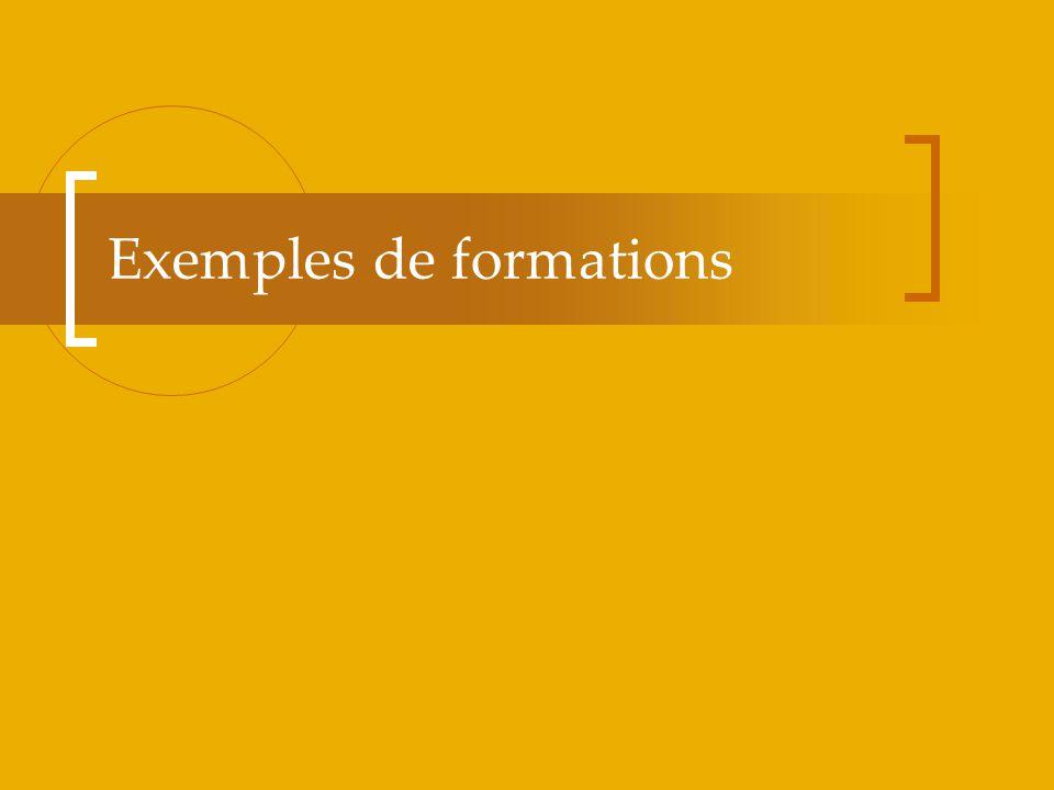 Exemples de formations