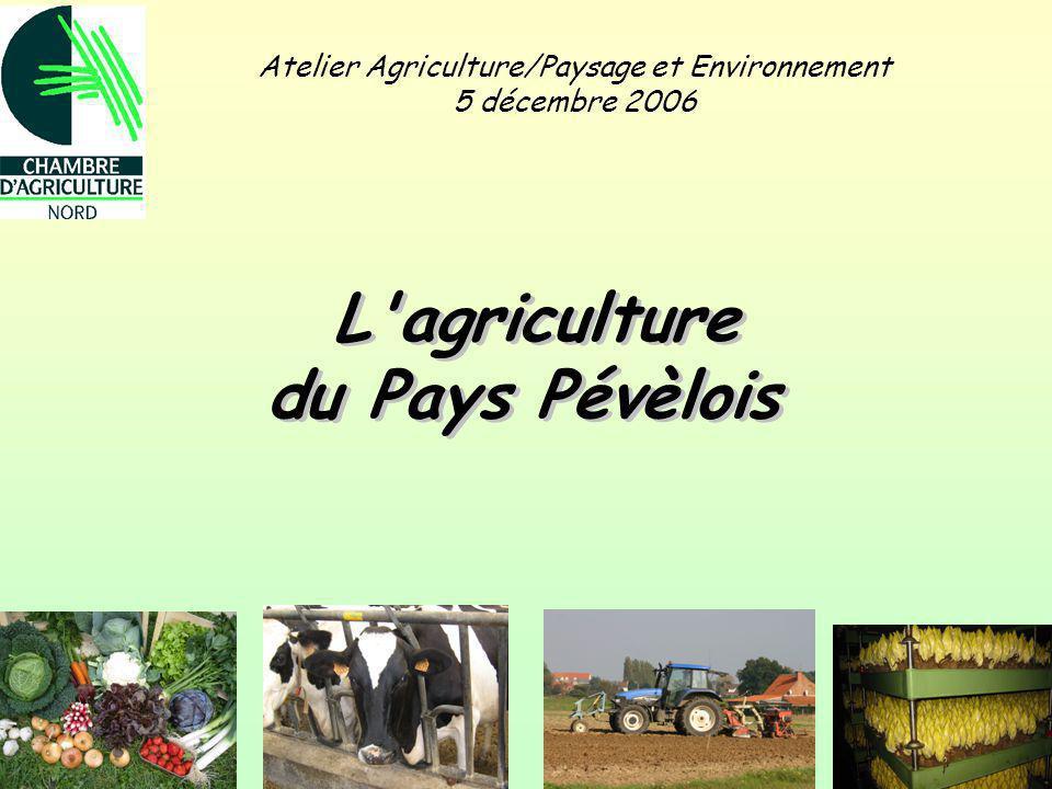 Atelier Agriculture/Paysage et Environnement 5 décembre 2006