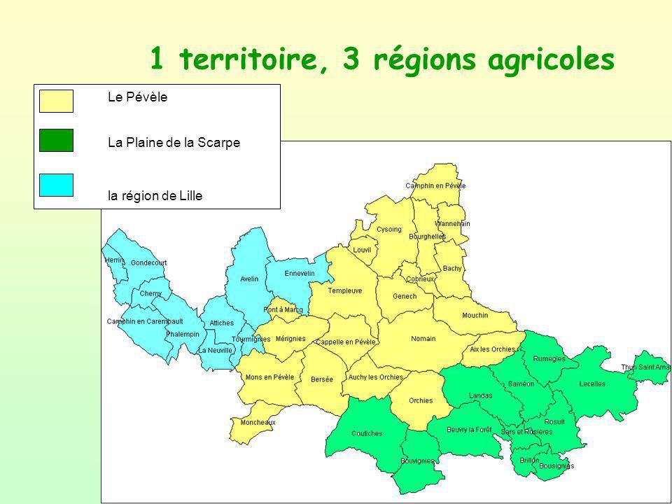 1 territoire, 3 régions agricoles Le Pévèle La Plaine de la Scarpe la région de Lille