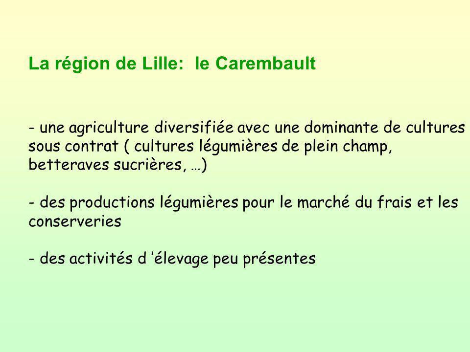 La région de Lille: le Carembault - une agriculture diversifiée avec une dominante de cultures sous contrat ( cultures légumières de plein champ, bett