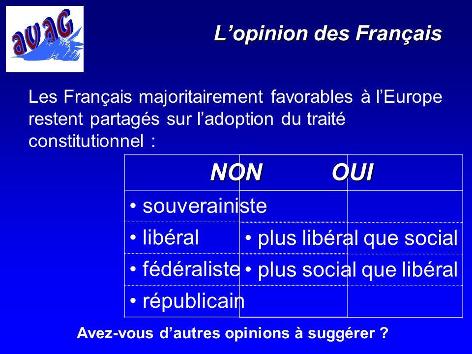 Lopinion des Français Les Français majoritairement favorables à lEurope restent partagés sur ladoption du traité constitutionnel :NON souverainiste li